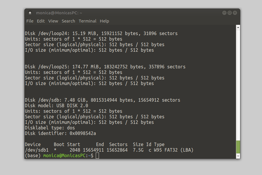 Screenshot of fdisk command in terminal